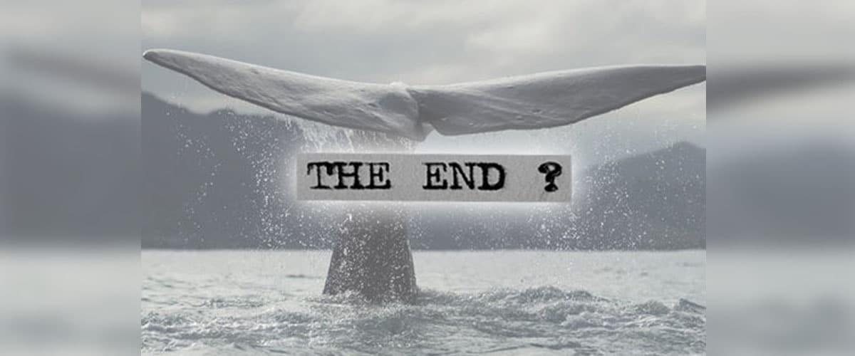 Não deixem as baleias matarem nossos jovens. Por dom Leomar Brustolin